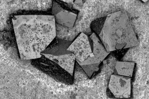 Ober- und Grenzflächen im Fokus: Polymeranhaftungen auf einer Extruderschneckenoberfläche im Rasterelektronenmikroskop. Foto: CZM