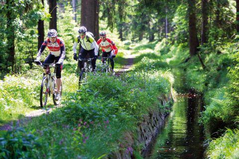 Natur und Freizeit: Im Film werden Touren mit dem Mountainbike als willkommener Ausgleich zum Studieren in Clausthal in Szene gesetzt. Foto: Harz Agentur