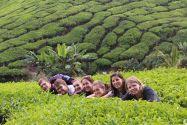 Clausthaler Studierende in Malaysia (von links): Lars Hefft, Jonas Pfeiffer, Elisabeth Stumpf (von der FH Konstanz), Nadine Urinski, Isabelle Brand, Ranja Plätzer und Miriam Hoffmann.